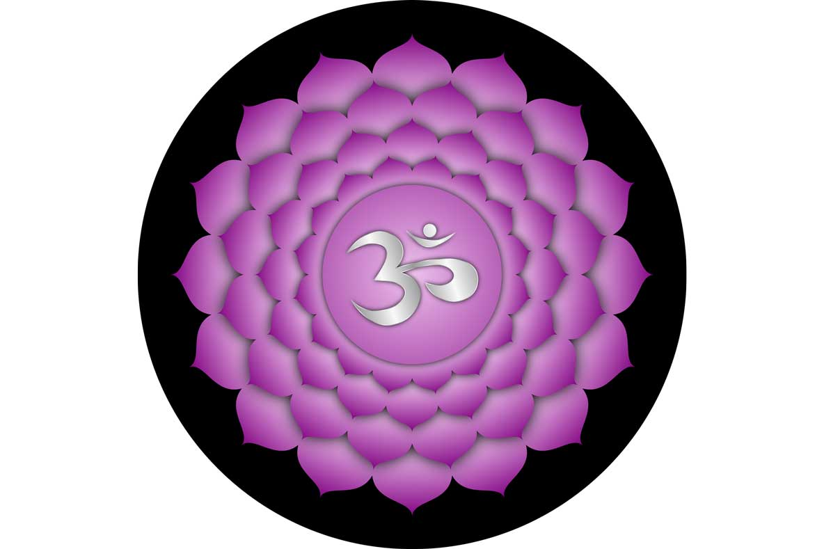 Crown Chakra aka Sahasrara: Body Anatomy